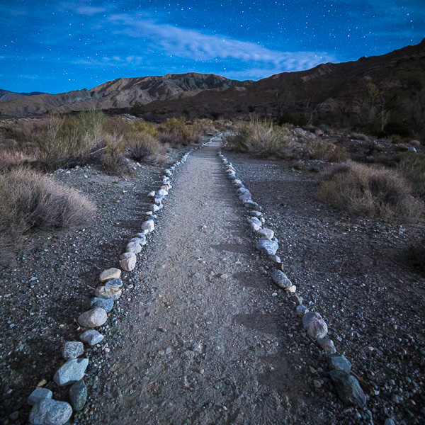 Moonlit Path 1