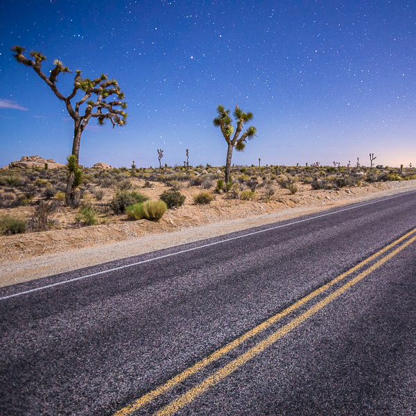 Moonlit Road, Joshua Tree National Park