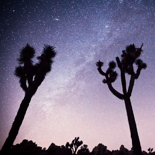 Milky Way, Joshua Tree National Park